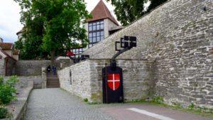 Den Danske Konges Have
